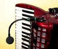 Akkordeon-Mikrofon mit Schwanenhals
