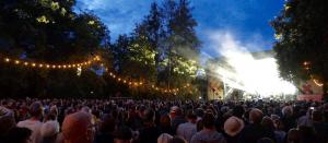 Rudolstadt-Festival 2016 Foto Michael Pohl